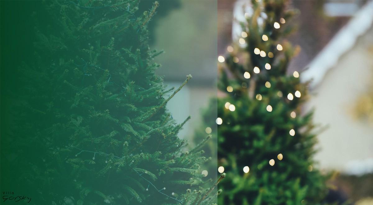 Villa Gorsky Święta Bożego Narodzenia