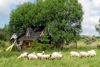 Villa Gorsky Ogrod_Domki drewniane