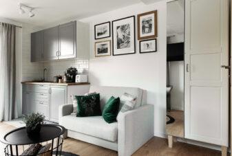 Apartament-Gorsky-aneks